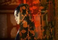 【見逃した映画特集2015】『黒衣の刺客』