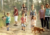 映画『いのちのはじまり:子育てが未来をつくる』自主上映のご案内:早期割引受付実施中